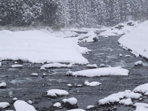 自然にろ過された天然の地下水