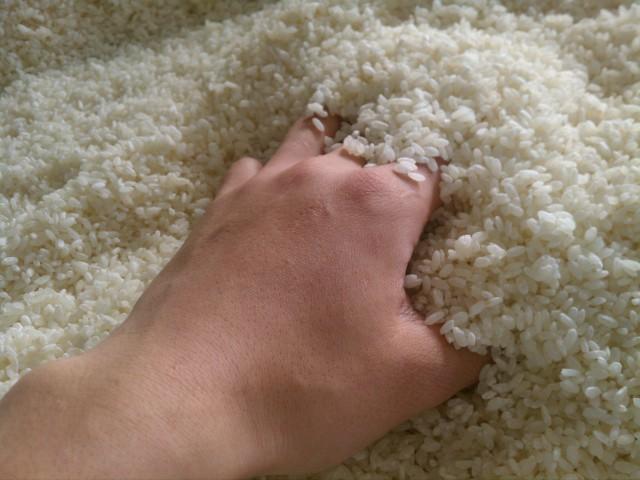 有機栽培の米麹