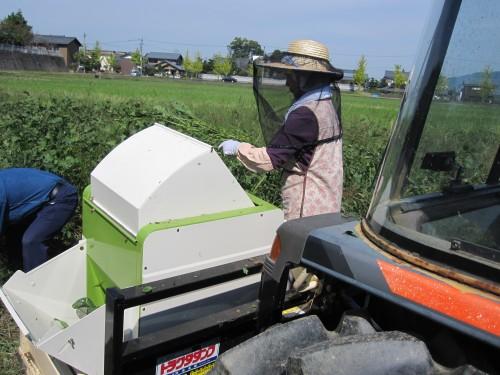 枝豆収穫機