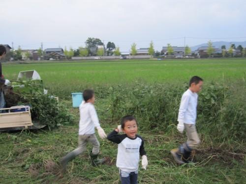 大豆畑トラスト運動をやっていてよかった瞬間