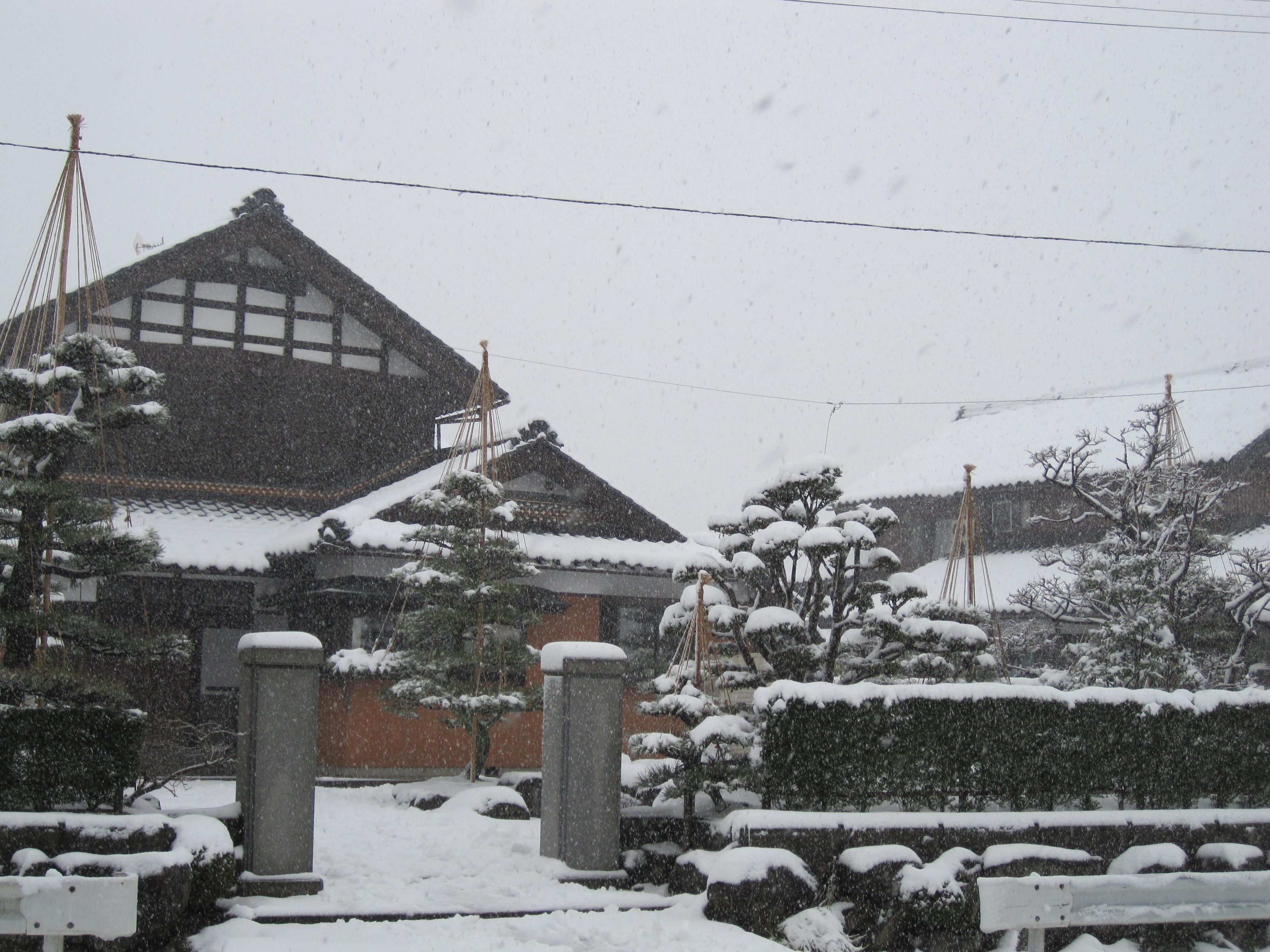 福井の積雪風景