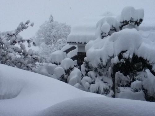 大雪が降った自分ちの屋根