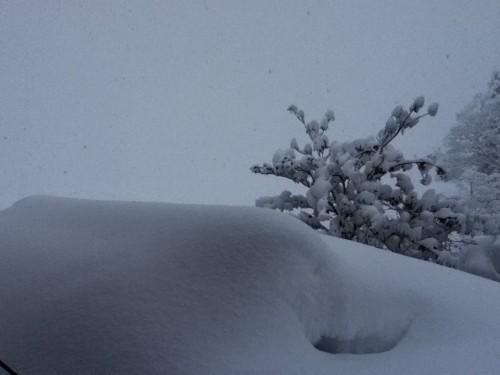 向かい側の田園風景も雪でまったく見えない