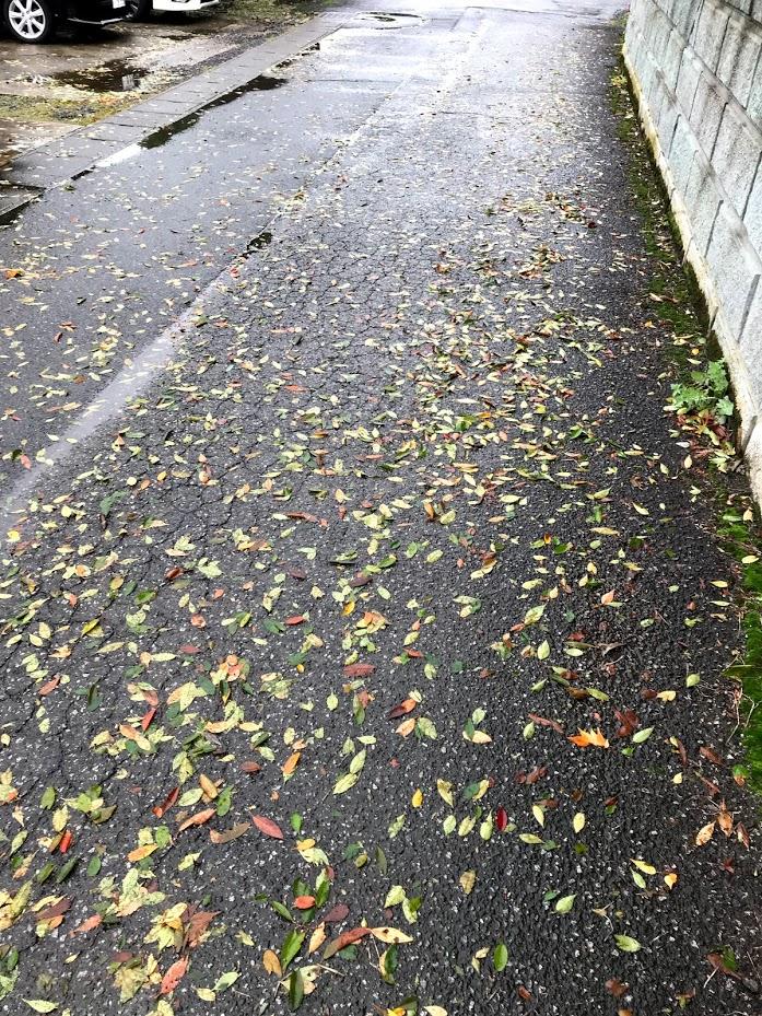 台風があった。福井は北風からくる被害が多々。