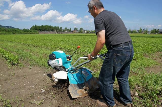 2020年度大豆トラスト運動の参加者を募集します!